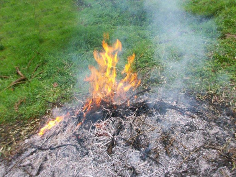 Rischio incendi, divieto di abbruciamenti in tutta la Toscana
