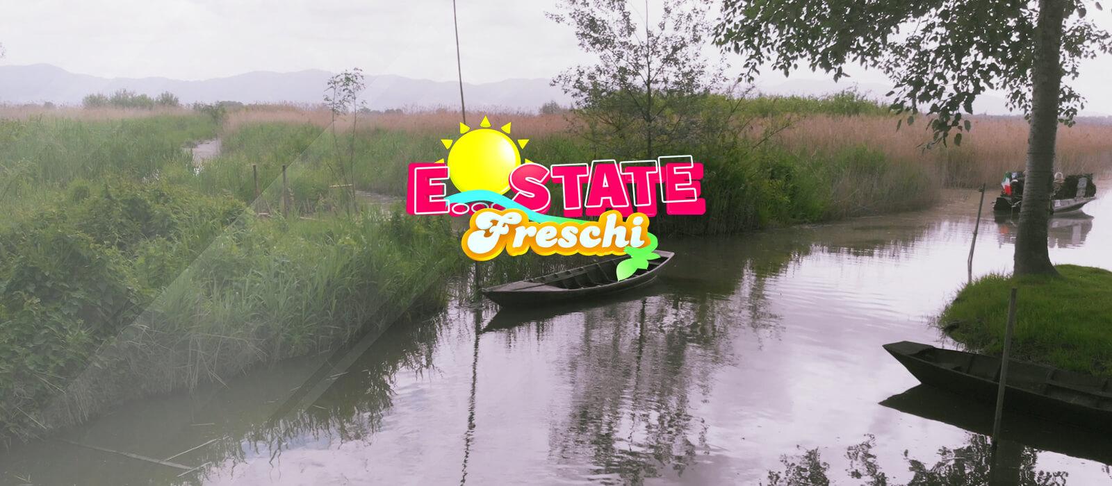 Estate Freschi